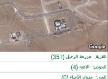 ارض البيع من المالك مباشرة منطقة شومر مزرعة الرحيل