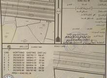 ارض سكني العقدة بركاء الخط الأول الشارع البحري بمساحه 6342م