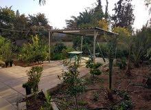 مزرعة فاخرة بمنطقة الروضة-البحر الميت وبسعر مناسب جدا