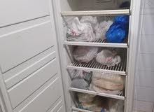 freezer simpson