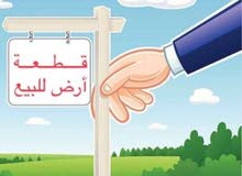 ارض للبيع في سوق الجمعة 11 يونيو خلف جامع الزقلعي