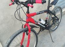 دراجة 24ايطالي
