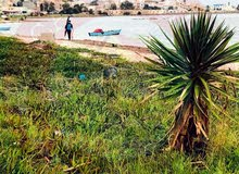 Terrains à kélibia pied dans l'eau..28910825
