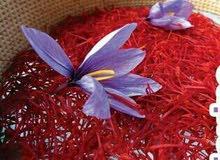 زعفران تالوين الحر الاصيل