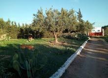 ارض للبيع - بزغوان بير