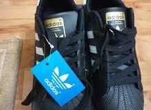 new adidas shoe حذاء اديداس جديد