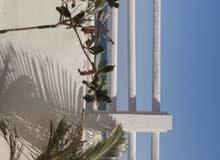 شاليه في سلطنة عمان ، الأشخره بالتحديد