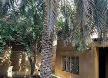 Villa property for sale Basra - Khaleej directly from the owner