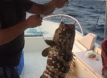 قارب بوت للرحلات البحر وصيد السمك
