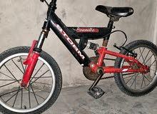دراجة16ايطاليه