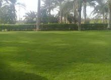ارض للبيع - طريق الاسكندرية