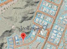 أرض سكنية كبيرة  العامرات المحج الامتداد الأول