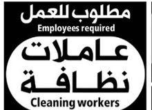 مطلوب عاملات تنظيف للمنازل يومي