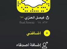 الخيل العربية