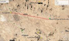 ارض للبيع - اراضي جنوب عمان - بريك – حوض 10 رجم العماره – المساحة 13 دونم
