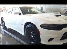 Dodge Charger 2016 For sale - White color
