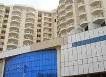 شقة مفروشة للايجار بالمعمورة الشا fancy apartment in elmaamoora