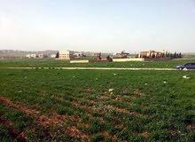 قطعة ارض في منطقة القليب طريق المطار بالقرب من مشاريع نقابة المهندسين اللبن للبيع
