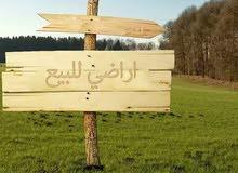 مطلوب ارض للشراء الفوري في  عبدون/دير غبار/الظهير/رجم عميش / الحويطي