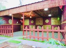 تزيين الحدائق والجلسات التراثيه وتركيب العشب الصناعي بأشكال هندسيه مختلفه
