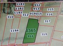 قطعة ارض مستوية بالقرب من المدرسة الجديدة  _ السائح الفيحاء _ قطعة 916