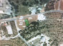 ارض للبيع فيه بلال (بدر الجديدة)