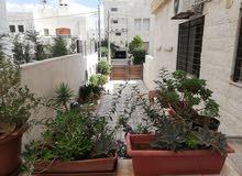 ام اذينة الشرقي -خلف زعفران-  شقة ارضية دوبلكس للايجار السنوي