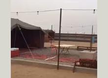 مخيمات الإيجار شمال جدة
