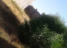 قطعة ارض 530م بها منزل صغير بجوار مركز زويته للتسوق