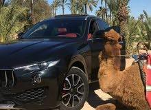 سيارات فاخرة للكراء مراكش