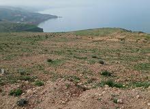 قطعة ارض للبيع في شاطء بحيرة اولاد بنعايد