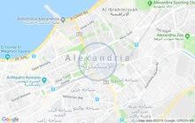 مكتب للايجار بسيدى جابر شارع ابو قير مباشر بمدخل خاص