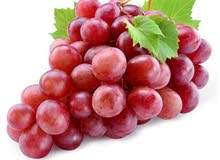 grape عنب muscat italia & red globe