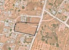 قطعة أرض سكنية كبيرة نصف هكتار ذات ثلاثة واجهات في تاجوراء موسى كوسا
