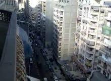 شقة 220 م  شارع جمال عبد الناصر المندرة