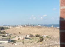 شقة للبيع متشطبة شارع المستشارين طوسون بجوار مول فتح الله