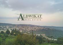 ارض للبيع في منطقة بدر الجديدة , مساحة الارض 7 دونم مشاع من اصل 28 دونم
