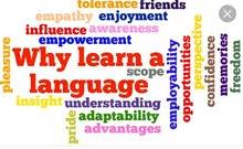 تعليم اللغة العربية لغير الناطقين بها مختص