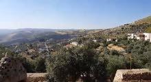 مزرعة بمساحة 4158 م2 . في منطقة اليزيدية/ اراضي السلط