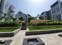 1 BR Pool Facing Apartment in Marsa Garden