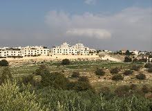 تسع قطع بمساحات مختلفه - في منطقة وادي السير  - ابو السوس- الدبّه