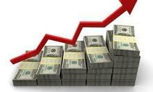 محاسب مالي خبرة في الادارة المالية + خبرة في المنظومات المحاسبية وانظمة ERP