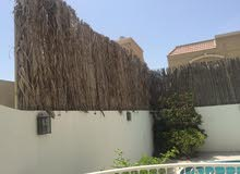 Dubai property for rent , building age -