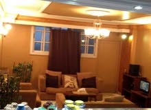 apartment consists number of rooms 2 Rooms for rent