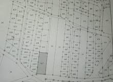 ارض للبيع  في الزرقاء حي الرشيد جريبا للبيع