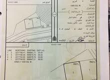 صناعيتين شبك في منطقة غدير في مصيره