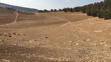 قطع اراضي مفروزه 500 متر