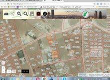 ارض للبيع في جريبا /حوض مذبح البعير - مساحة(500متر)-وسط الخدمات بسعر منافس من المالك