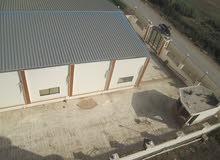 مبنى تجاري متميز للايجار ببنها يصلح لكافة الاغراض (شركة-مخزن-مصنع-معرض)