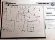 ارض من أراضي شمال عمان / موبص